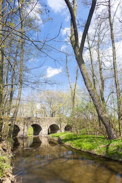 Barok brug Tsjechische Republiek water reizen architectuur Stockfoto © phbcz