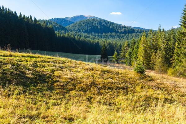 Nizke Tatry (Low Tatras), Slovakia Stock photo © phbcz