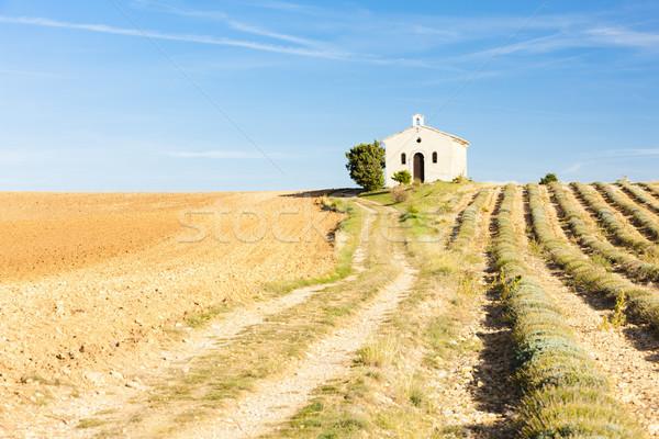 Chapelle champ de lavande plateau bâtiment architecture Europe Photo stock © phbcz