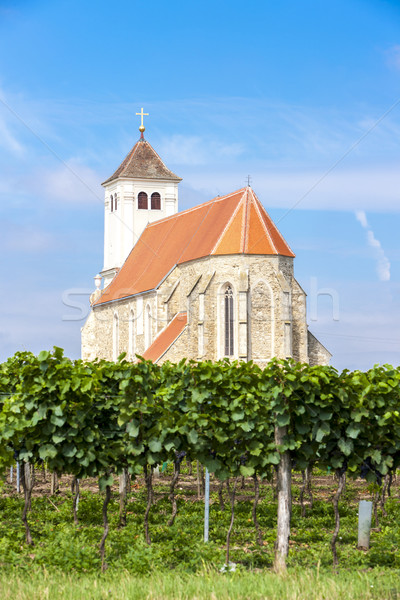Igreja vinha baixar Áustria edifício viajar Foto stock © phbcz