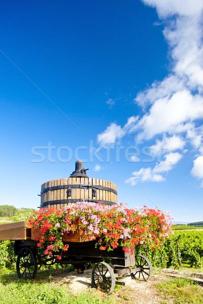 winepress near Pommard, Burgundy, France Stock photo © phbcz