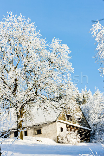 cottage in winter, Jeseniky, Czech Republic Stock photo © phbcz