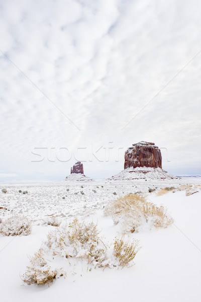 winter The Mitten and Merrick Butte, Monument Valley National Pa Stock photo © phbcz