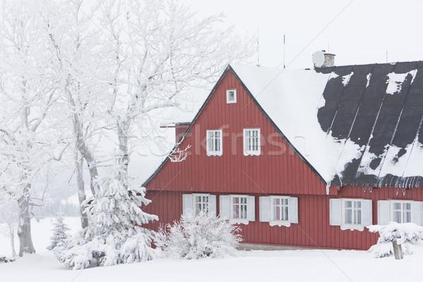 Casa de campo inverno montanhas República Checa casa edifício Foto stock © phbcz