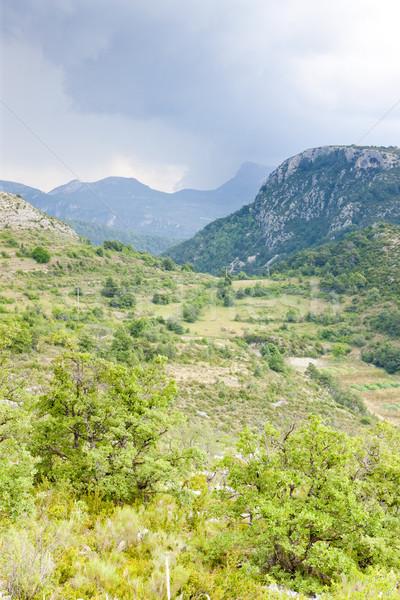 landscape near Comps sur Artuby, Provence, France Stock photo © phbcz
