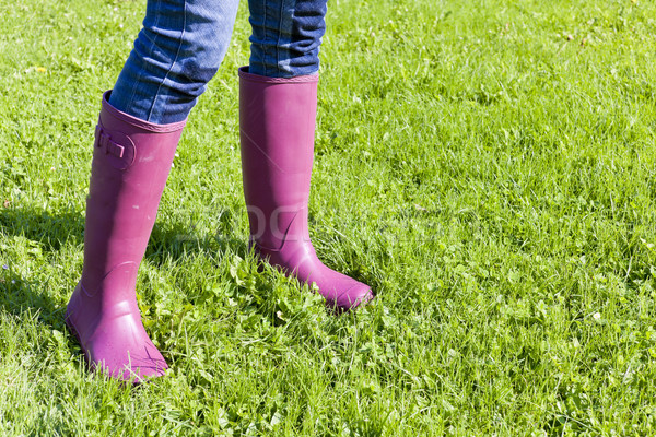 detail of woman wearing rubber boots on lawn Stock photo © phbcz