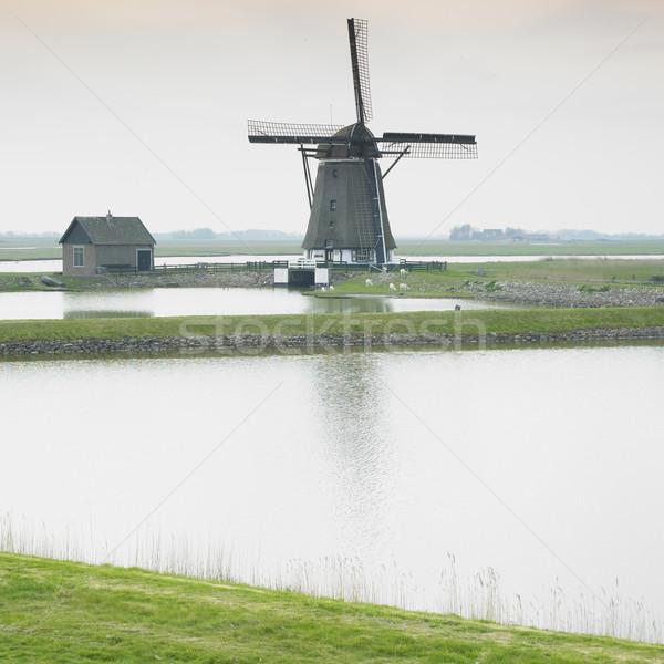windmill, Texel Island, Netherlands Stock photo © phbcz