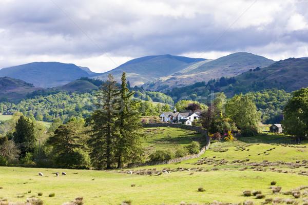 Tájkép Lake District Anglia ház fa Európa Stock fotó © phbcz