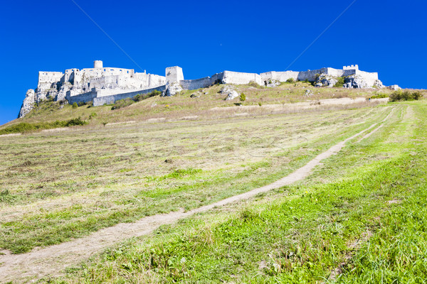 Spissky Castle, Slovakia Stock photo © phbcz