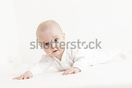 Cinque mesi vecchio ragazza baby Foto d'archivio © phbcz