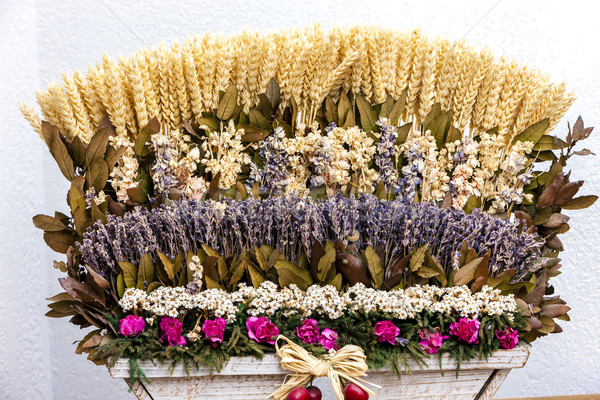 still life of lavenders and grain, Provence, France Stock photo © phbcz