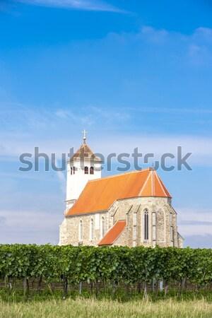 Templom szőlőskert alsó Ausztria épület utazás Stock fotó © phbcz