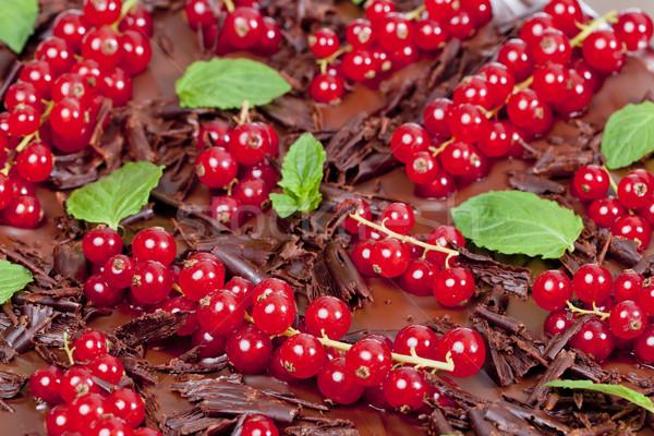 Rojo grosella menta chocolate alimentos hoja Foto stock © phbcz