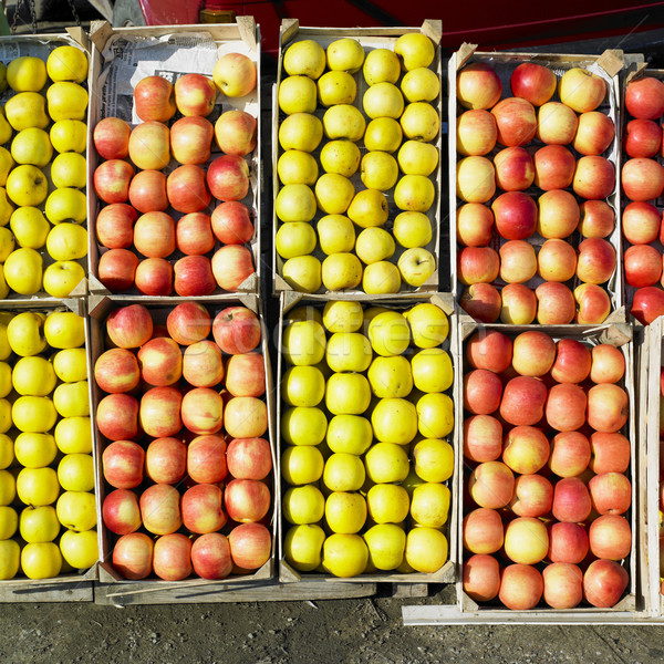 apples, Serbia Stock photo © phbcz