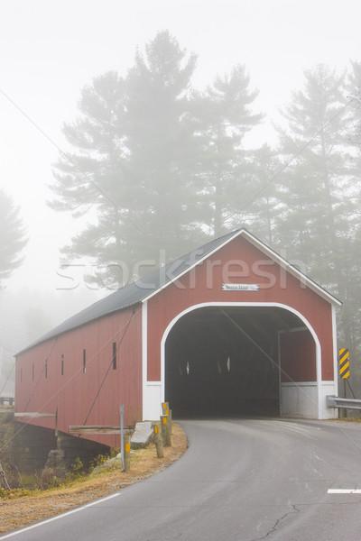 Gedekt brug New Hampshire USA reizen gebouwen Stockfoto © phbcz