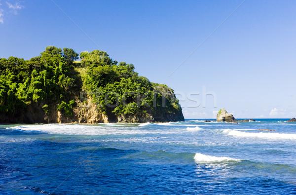 Culloden Bay, Tobago Stock photo © phbcz