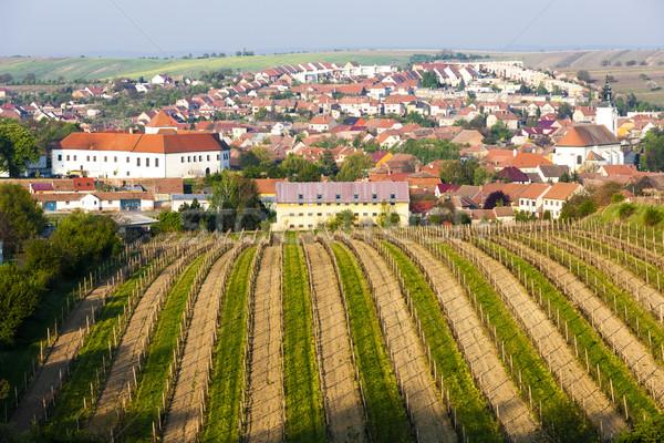 Szőlőskert Csehország épület utazás kastély falu Stock fotó © phbcz