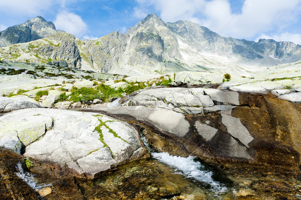 Small Cold Valley, Vysoke Tatry (High Tatras), Slovakia Stock photo © phbcz