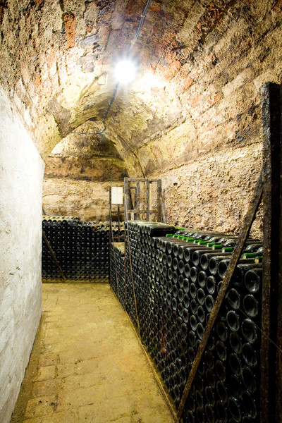 wine archive, wine cellar in Jaroslavice, Czech Republic Stock photo © phbcz