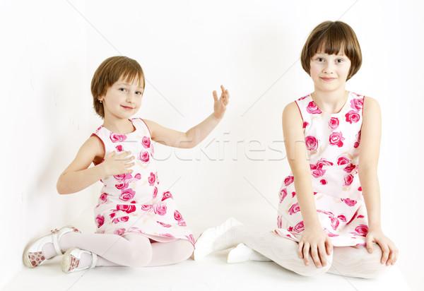 Kettő nővérek visel hasonló ruhák lány Stock fotó © phbcz