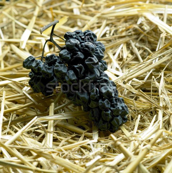 grapes drying for straw wine (neronet), Biza Winery, Cejkovice,  Stock photo © phbcz