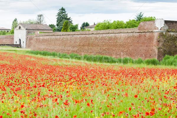 Takviye şehir İtalya çiçek Bina duvar Stok fotoğraf © phbcz