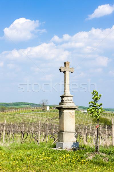 cross with vineyard near Nemcicky, Czech Republic Stock photo © phbcz