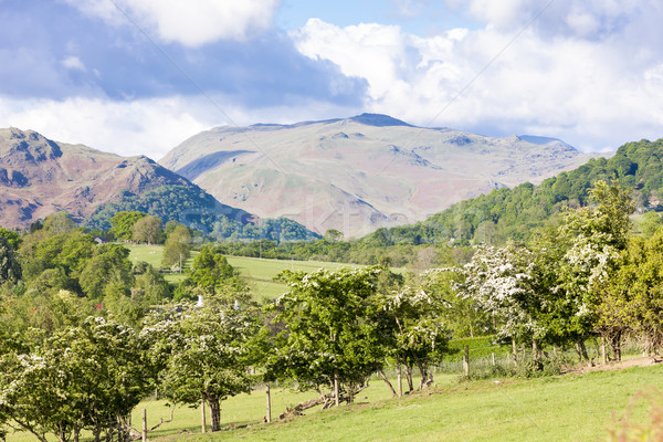 landscape of Lake District near Ullswater, Cumbria, England Stock photo © phbcz