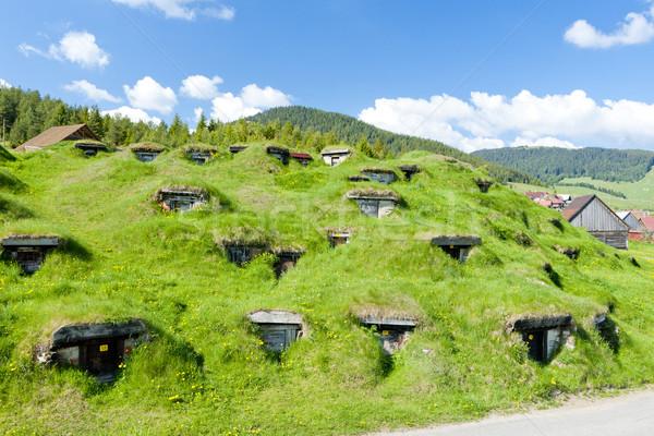 Slowakije land buitenshuis landelijk platteland Stockfoto © phbcz
