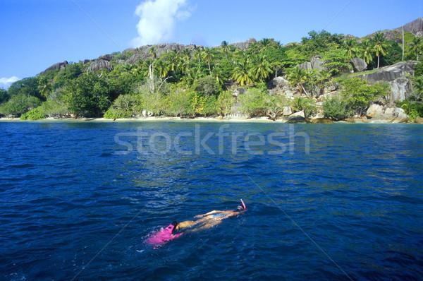 snorkeling Stock photo © phbcz