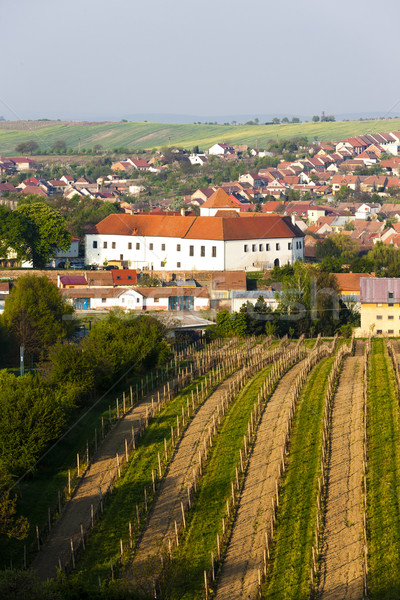Cejkovice with vineyard, Czech Republic Stock photo © phbcz