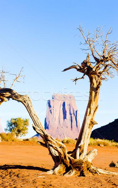 The North Window, Monument Valley National Park, Utah-Arizona, U Stock photo © phbcz