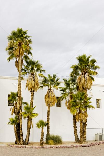 Kilise Arizona ABD Bina mimari hurma ağacı Stok fotoğraf © phbcz