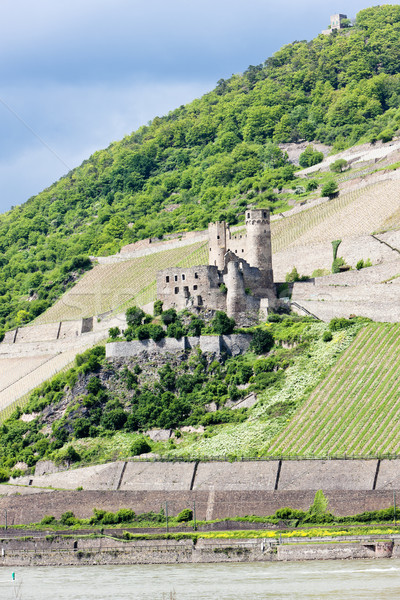 ruins of Ehrenfels Castle, Rhineland-Palatinate, Germany Stock photo © phbcz