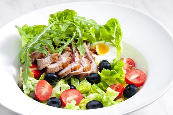 Sebze salata ördek meme dilimleri Stok fotoğraf © phbcz