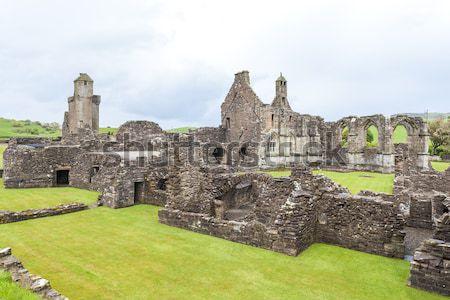 Ruines abdij Schotland gebouw architectuur gothic Stockfoto © phbcz