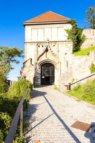Porte château Bratislava Slovaquie architecture Europe Photo stock © phbcz