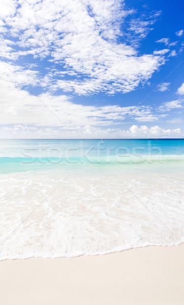 Enterprise Beach, Barbados, Caribbean Stock photo © phbcz