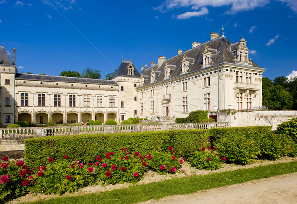 Chateau de Br Stock photo © phbcz