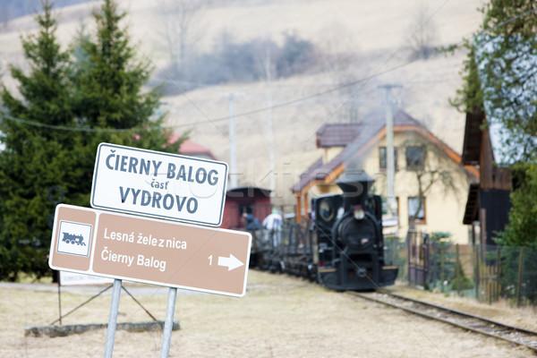 Vapor trem ferrovia Eslováquia assinar Foto stock © phbcz