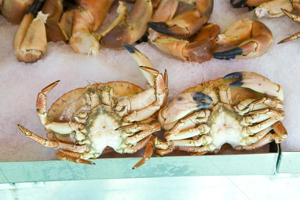crabs, Norway Stock photo © phbcz