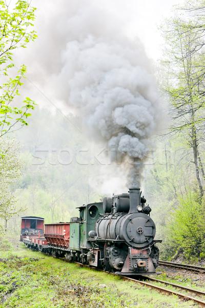 Keskeny kaliber vasút vonat gőz kint Stock fotó © phbcz
