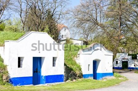 Bor Csehország építészet Európa kint vidéki Stock fotó © phbcz