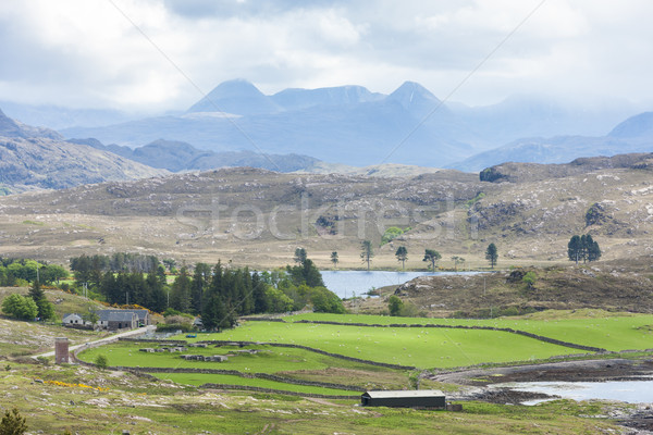 landscape near Loch Ewe, Highlands, Scotland Stock photo © phbcz