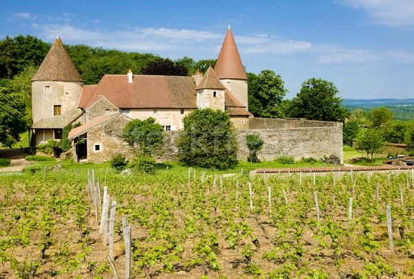 Chateau de Nobles, Burgundy, France Stock photo © phbcz