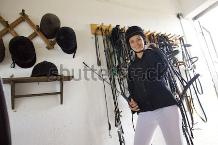 equestrian in a stable Stock photo © phbcz