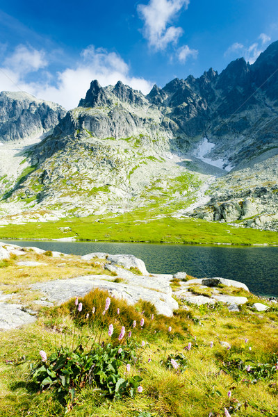 Five Spis Tarns, High Tatras (Vysoke Tatry), Slovakia Stock photo © phbcz