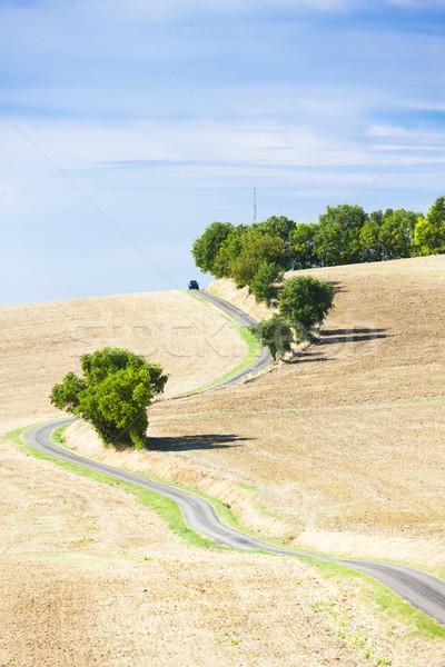 Veld weg afdeling Frankrijk landschap plant Stockfoto © phbcz