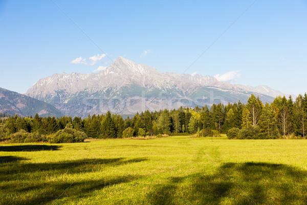 Hegy magas Szlovákia tájkép hegyek Európa Stock fotó © phbcz