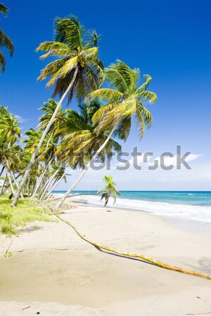 Sauteurs Bay, Grenada Stock photo © phbcz